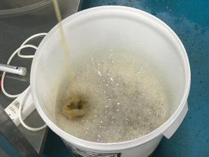 Imagen del proceso de elaboración de cerveza