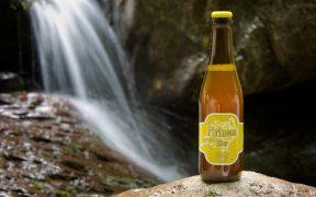 Imagen de una cerveza Pilsen de Pirineos Bier